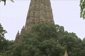 mahabodhi (3)