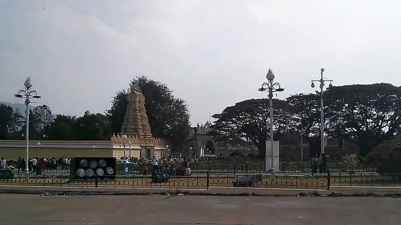 Mysore Palace (10)