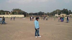 Mysore Palace (15)