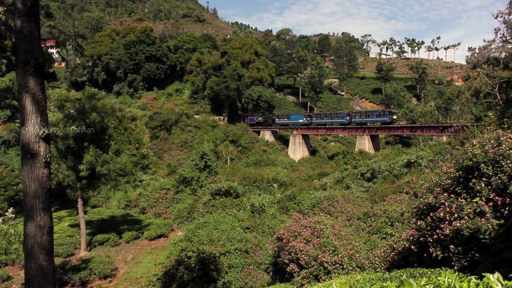 Nilgiri Mountain Railway (7)