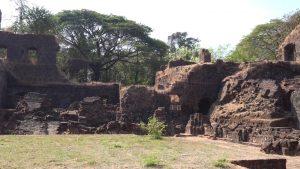Old Goa (6)