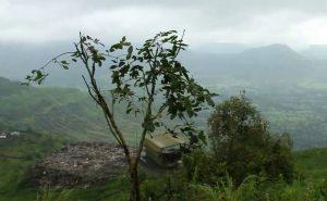 Western Ghats Maharashtra (4)