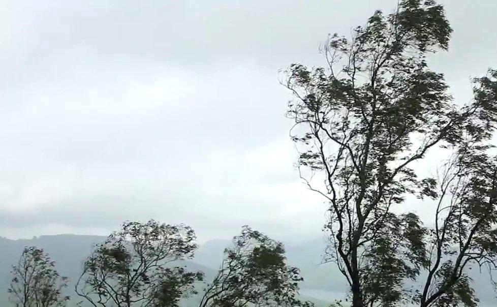 Western Ghats Maharashtra (9)