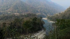 manas national park (2)